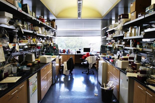 Image of lab