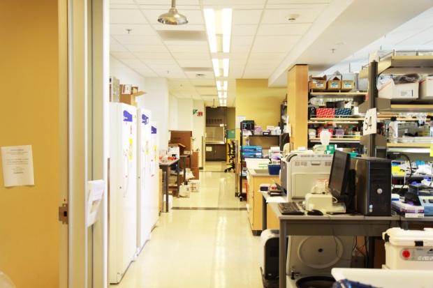 Image of Laboratory Office