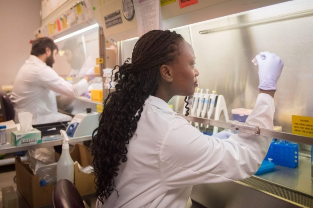 Dr. Berenice Mbiribindi and colleague work in the Transplant Immunology Lab